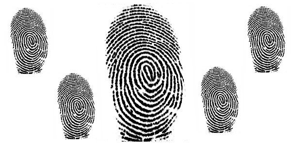 Authentec Biometrics
