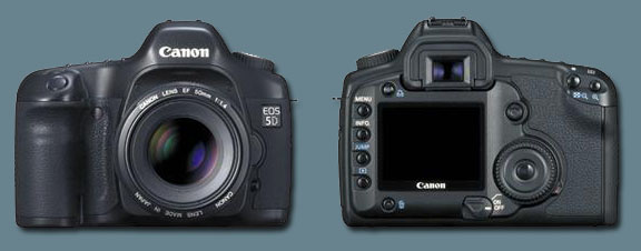 Canon 5d Preview
