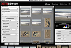 George Jardine Lightroom Beta Overview