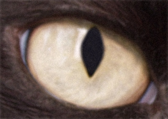 Cat's Eye - BlowUp Upsampling