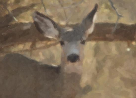 Snap Art Pastel Filter
