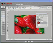 Adobe Photoshop Elements Fundamentals by Software Cinema - Session 06